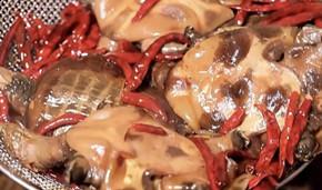 风靡全网的麻辣甲鱼能火多久?